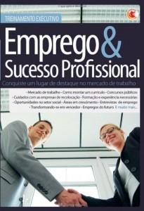 Baixar Treinamento Executivo – Emprego e Sucesso Profissional pdf, epub, eBook