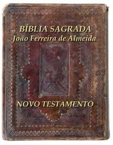 Baixar Bíblia Sagrada Novo Testamento (Série de Gays e Lésbicas) pdf, epub, eBook