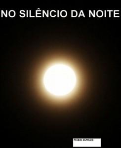 Baixar No Silêncio da Noite pdf, epub, eBook