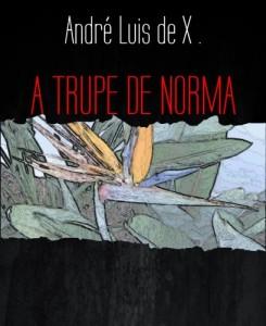 Baixar A TRUPE DE NORMA: NORMA pdf, epub, eBook