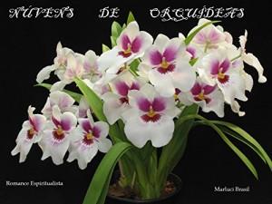 Baixar Núvens de Orquídeas pdf, epub, ebook