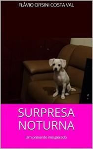 Baixar SURPRESA NOTURNA: Um presente inesperado pdf, epub, ebook