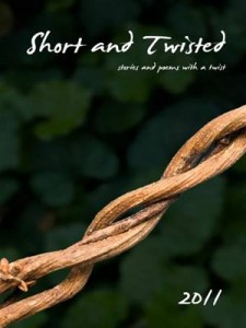 Baixar Short and twisted 2011 pdf, epub, eBook