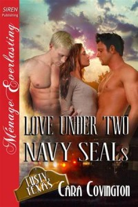 Baixar Love under two navy seals pdf, epub, eBook
