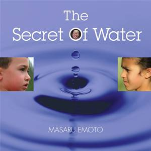Baixar Secret of water, the pdf, epub, eBook
