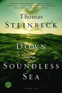 Baixar Down to a soundless sea pdf, epub, eBook