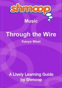 Baixar Shmoop music guide: sweet little sixteen pdf, epub, eBook