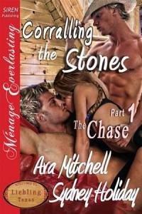 Baixar Corralling the stones part 1: the chase pdf, epub, eBook