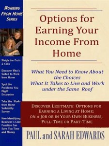Baixar Options for earning your income from home pdf, epub, eBook