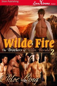 Baixar Wilde fire pdf, epub, eBook