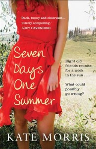 Baixar Seven days one summer pdf, epub, ebook