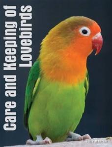 Baixar Your lovebird pdf, epub, eBook