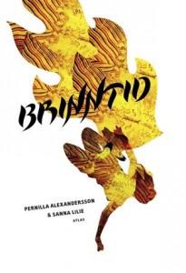 Baixar Brinntid pdf, epub, eBook