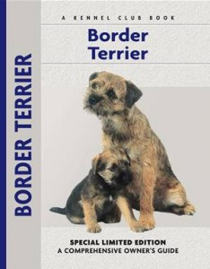 Baixar Border terrier pdf, epub, eBook