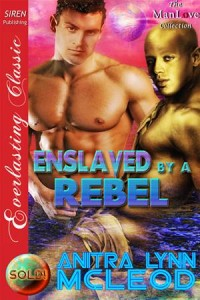 Baixar Enslaved by a rebel pdf, epub, eBook