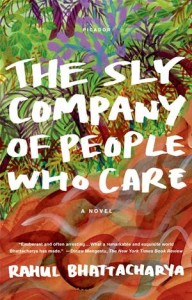 Baixar Sly company of people who care, the pdf, epub, eBook