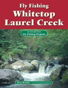 Baixar Fly fishing whitetop laurel creek pdf, epub, eBook