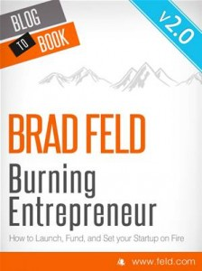 Baixar Brad feld's burning entrepreneur – how to pdf, epub, eBook