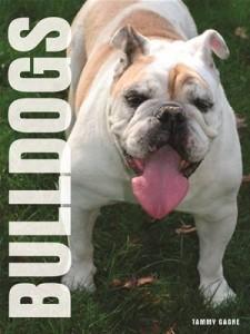 Baixar Your bulldog pdf, epub, eBook