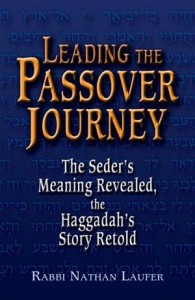 Baixar Leading the passover journey: the seders meaning pdf, epub, eBook
