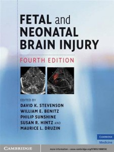 Baixar Fetal and neonatal brain injury pdf, epub, eBook