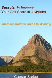 Baixar Secrets to improve your golf score in 2 weeks pdf, epub, eBook