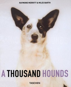 Baixar Thousand hounds, a pdf, epub, eBook