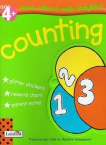 Baixar Counting pdf, epub, eBook