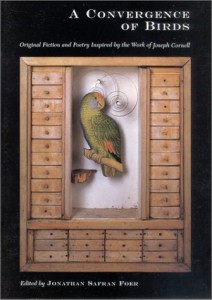 Baixar Convergence of birds, a pdf, epub, eBook