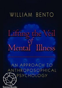 Baixar Lifting the veil of mental illness pdf, epub, eBook