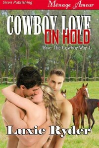 Baixar Cowboy love on hold pdf, epub, ebook