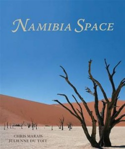 Baixar Namibia space pdf, epub, ebook