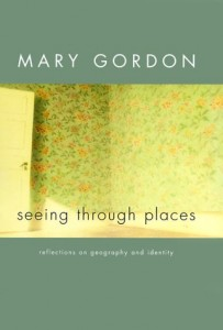 Baixar Seeing through places – reflections on geography a pdf, epub, eBook