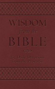 Baixar Wisdom from the bible: 365 daily devotions from pdf, epub, eBook