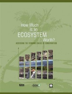 Baixar How much is an ecosystem worth?: assessing the pdf, epub, eBook