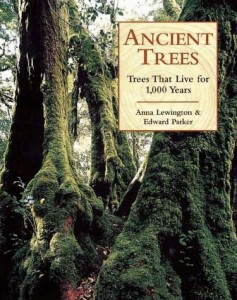 Baixar Ancient trees pdf, epub, ebook