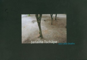 Baixar 100 little deaths- janaina tschape pdf, epub, eBook