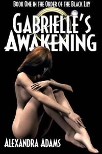 Baixar Gabrielle's awakening pdf, epub, ebook