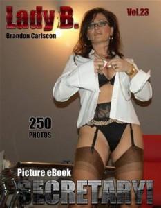 Baixar Lady b. vol.23 secretary pdf, epub, ebook