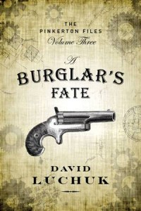 Baixar Burglar's fate, a pdf, epub, ebook