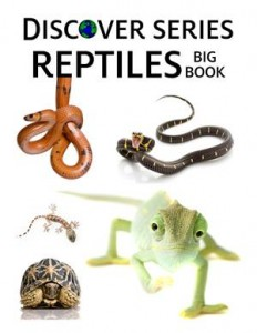 Baixar Reptiles big book pdf, epub, ebook