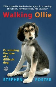 Baixar Walking ollie pdf, epub, ebook
