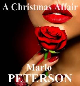 Baixar Christmas affair, a pdf, epub, eBook