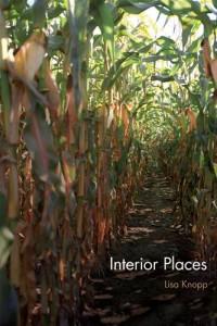 Baixar Interior places pdf, epub, eBook