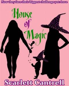 Baixar House of magic pdf, epub, ebook