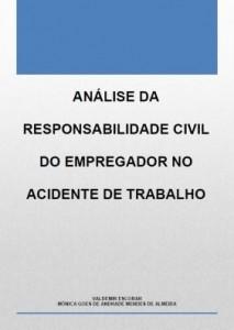 Baixar Análise da responsabilidade civil do empregador no acidente de trabalho pdf, epub, eBook