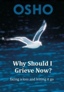 Baixar Why Should I Grieve Now?: Facing a Loss and Letting It Go pdf, epub, eBook