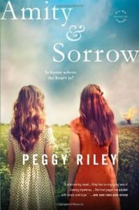 Baixar Amity & sorrow pdf, epub, eBook