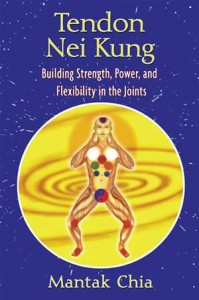 Baixar Tendon nei kung: building strength, power, and pdf, epub, eBook