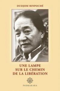 Baixar Lampe sur le chemin de la liberation, une pdf, epub, eBook